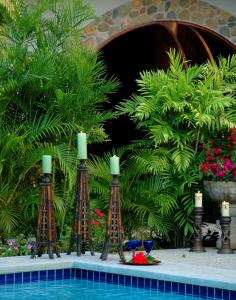 Almond Tree Hotel Resort