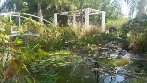 Kmo Yam In The Love Garden - Umm Qays