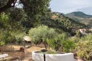 Pioppi House - AbcAlberghi.com