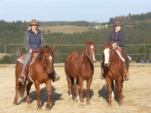 Espi-Stables Ferienhof Esterhammer, Farm stays  Liebenau - big - 37