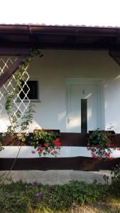 Rooms Lutra, Penzióny  Bilje - big - 45
