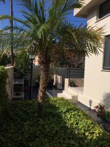 obrázek - Golden View Villa