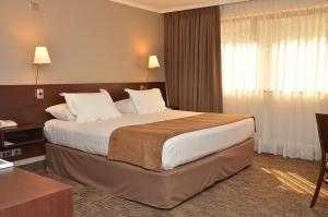 Hotel Director Vitacura, Hotely  Santiago - big - 42