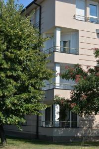 Apartment Lipov Gaj, Apartmány  Novi Sad - big - 10