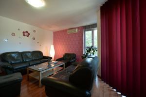 Apartment Lipov Gaj, Apartmány  Novi Sad - big - 18