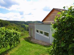 Weingut Dietl, Apartmány  Riegersburg - big - 100