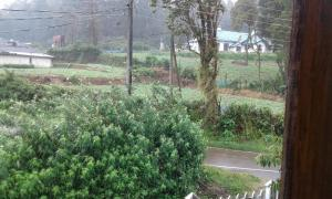 Selis Manor Holiday Home, Homestays  Nuwara Eliya - big - 57