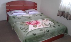Selis Manor Holiday Home, Alloggi in famiglia  Nuwara Eliya - big - 74