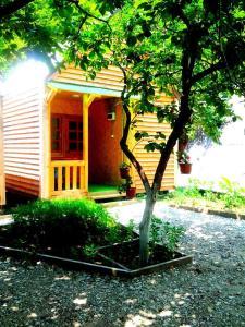 Гостевой дом Светлана, Дедеркой