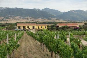 Agriturismo Campesi - AbcAlberghi.com