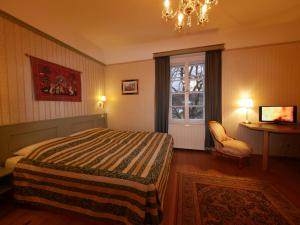 Schlosshotel Zamek Zdikov, Hotely  Zdíkov - big - 10