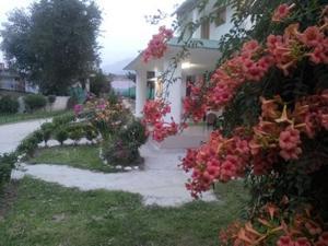The Tara Villa, Bed and Breakfasts  Shamshi - big - 31