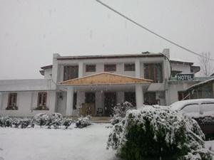 The Tara Villa, Bed & Breakfast  Shamshi - big - 49