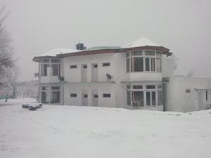 The Tara Villa, Bed and Breakfasts  Shamshi - big - 29