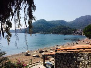 Курортный отель Pine Beach