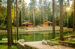 Raivola, Resort  Roščino - big - 49