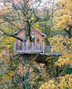 Location gîte, chambres d'hotes Le Chêne Perché dans le département Ardennes 8