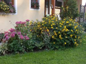 Haus Margit, Homestays  Schlierbach - big - 32
