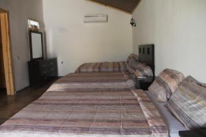 odivin hotel luxury suite