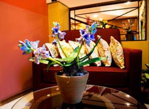 Hotel Bristol, Hotels  Asuncion - big - 40