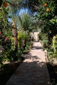 Hotel Dar Zitoune Taroudant, Hotels  Taroudant - big - 51