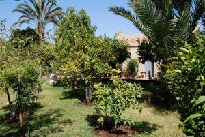 Hotel Dar Zitoune Taroudant, Hotels  Taroudant - big - 47