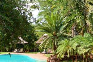 Pestana Kruger Lodge (25 of 47)