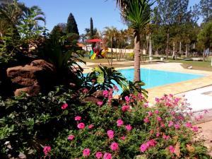 Hotel Marina Do Lago, Hotels  Santa Cruz da Conceição - big - 76