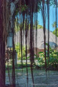 Moorea Beach Lodge (30 of 36)