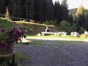 Alpin Park, Bed & Breakfast  Sappada - big - 66