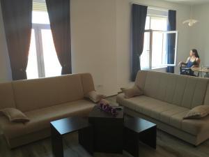 Apartment Seno