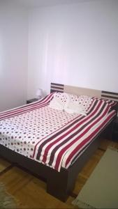 New Airport Apartments, Apartments  Belgrade - big - 49