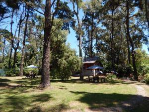 Altos del Bosque, Holiday homes  Mar del Plata - big - 19