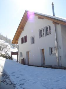 Ferienwohnung Suter - Apartment - Seewen