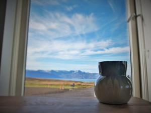 Saltvík Farm Guesthouse - Hotel - Húsavík