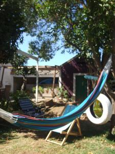 obrázek - Art Nouveu House with backyard