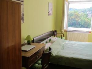 Apartment Fairy Tale, Ferienwohnungen  Karlsbad - big - 28