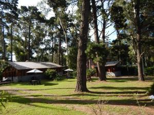 Altos del Bosque, Holiday homes  Mar del Plata - big - 21