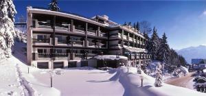 Hôtel de la Forêt
