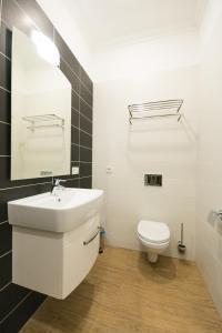 Partner Guest House Khreschatyk, Appartamenti  Kiev - big - 21