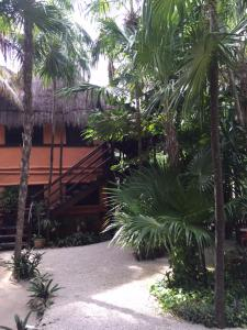 Las Palmas Maya, Hotely  Tulum - big - 18