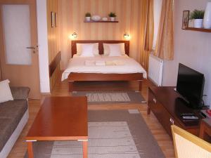 Gonda Apartments - Bukovina