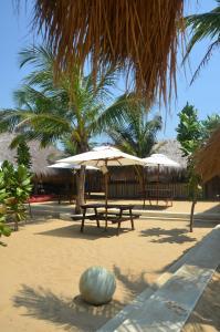 Dolphin Beach Resort (24 of 122)
