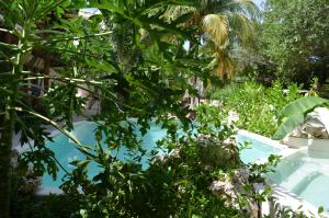 Hotel Casa Iguana Holbox, Hotel  Isola Holbox - big - 58