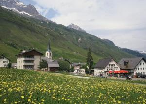 Hotel des Alpes.  Photo 2