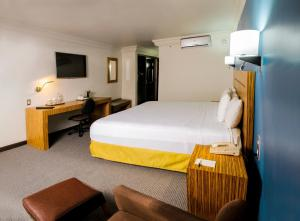 Radisson Hotel Del Rey Toluca, Hotels  Toluca - big - 47