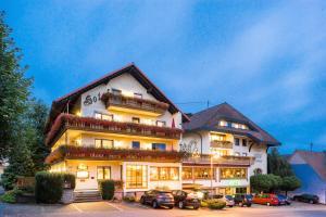 Hotel Krone Igelsberg - Heselbach