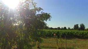 Le Soleil en Gironde