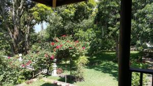 Villas de Atitlan, Комплексы для отдыха с коттеджами/бунгало  Серро-де-Оро - big - 260