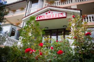 Pensiunea Cornelius, Guest houses  Piatra Neamţ - big - 25